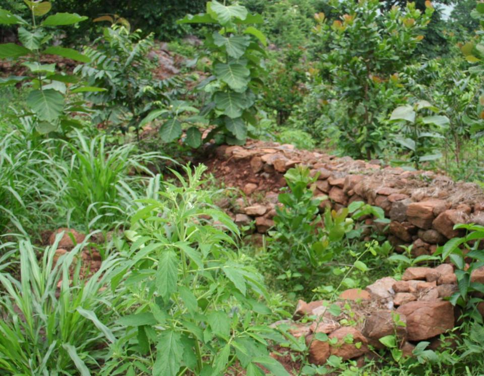 otto von busch, slow design, dromology, walls against water runoff